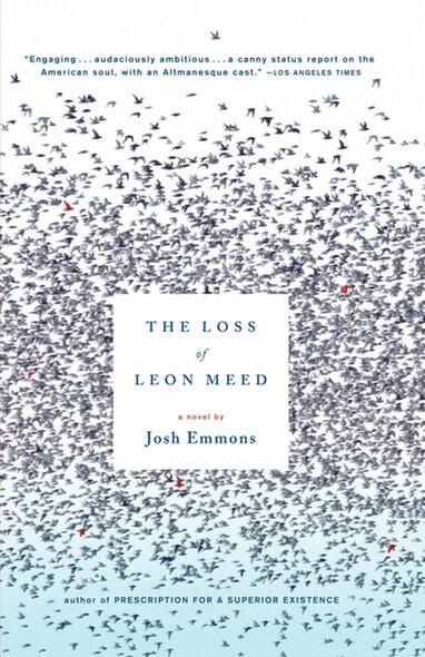 The Loss of Leon Meed : A Novel
