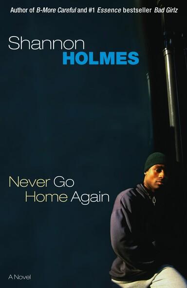 Never Go Home Again : A Novel