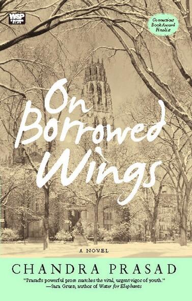 On Borrowed Wings : A Novel