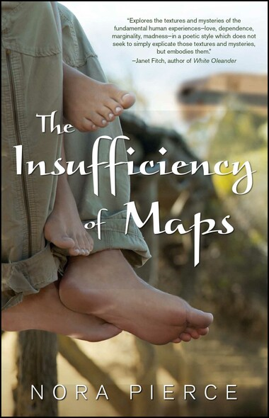 The Insufficiency of Maps : A Novel