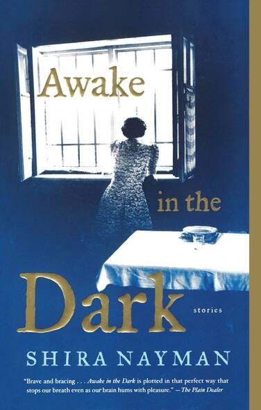 Awake in the Dark : Stories