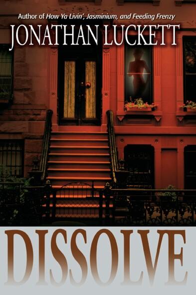Dissolve : A Novel