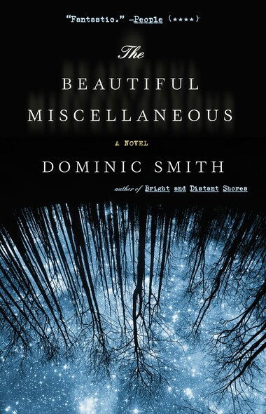 The Beautiful Miscellaneous : A Novel