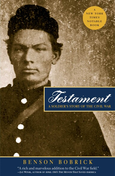 Testament : A Soldier's Story of the Civil War