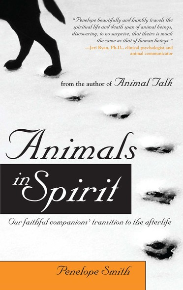 Animals in Spirit : Our faithful companions' transition to the afterlife