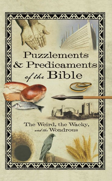 Puzzlements & Predicaments of the Bible : The Weird, the Wacky, and the Wondrous