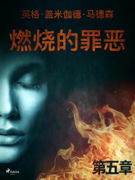 燃烧的罪恶 - 第五章