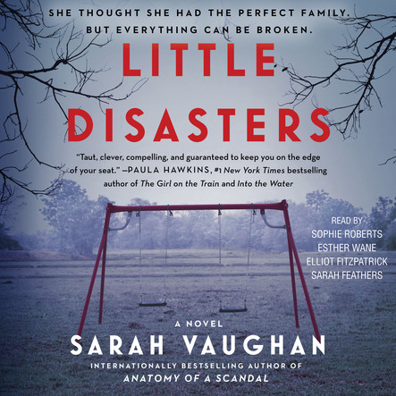 Little Disasters : A Novel