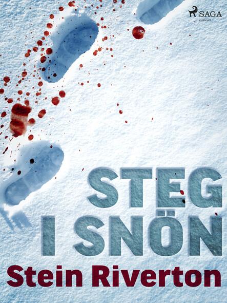 Steg i snön