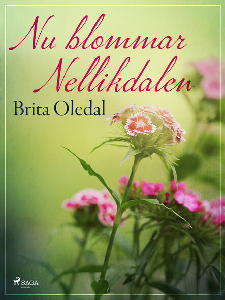 Nu blommar Nellikdalen