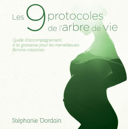 Les 9 protocoles de l'arbre de vie : Guide d'accompagnement à la grossesse pour les merveilleuses femmes créatrices