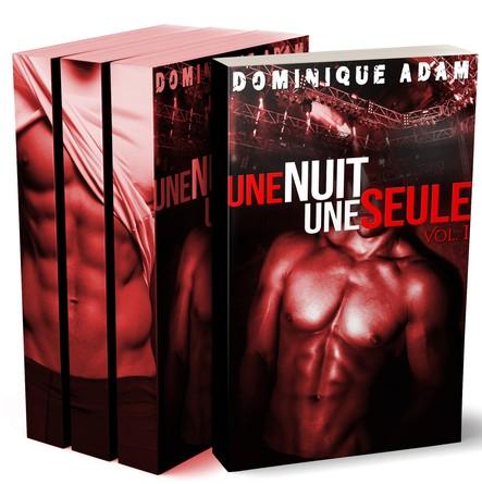 Une Nuit, Une Seule (L'Intégrale): (Romance Gay Adulte)