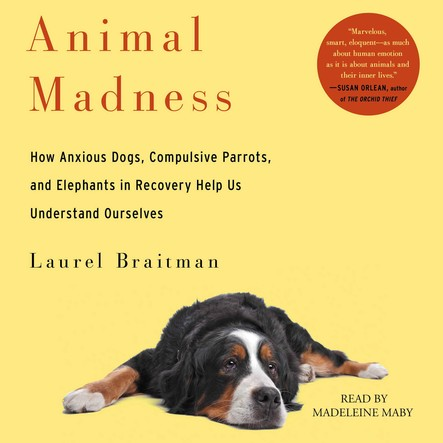Animal Madness : How Anxious Dogs, Compulsive Parrots, Gorillas on Drugs, and Elephants in Recovery Help Us Understand Ourselves