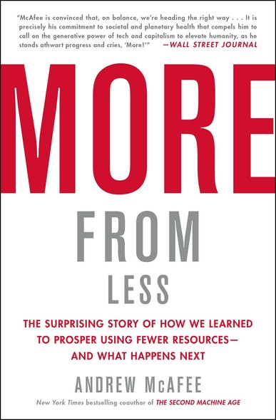 More from Less : The Surprising Story of How We Learned to Prosper Using Fewer Resources—and What Happens Next