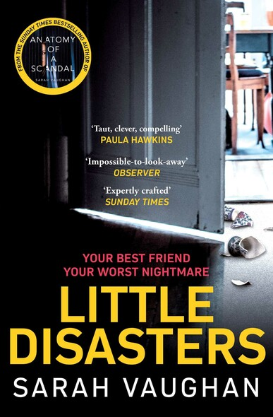Little Disasters : the compelling and thought-provoking new novel from the author of the Sunday Times bestseller Anatomy of a Scandal