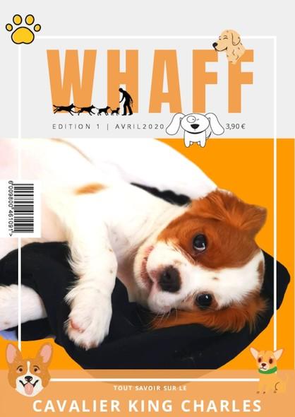 Whaff - N°001