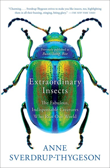 Extraordinary Insects : The Fabulous, Indispensable Creatures Who Run Our World