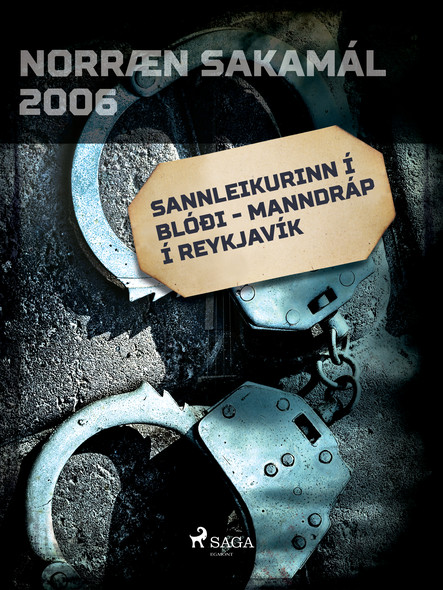 Sannleikurinn í blóði - Manndráp í Reykjavík