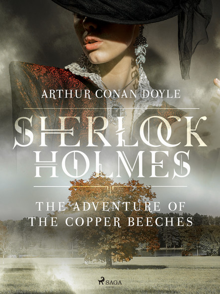 The Adventure of the Copper Beeches