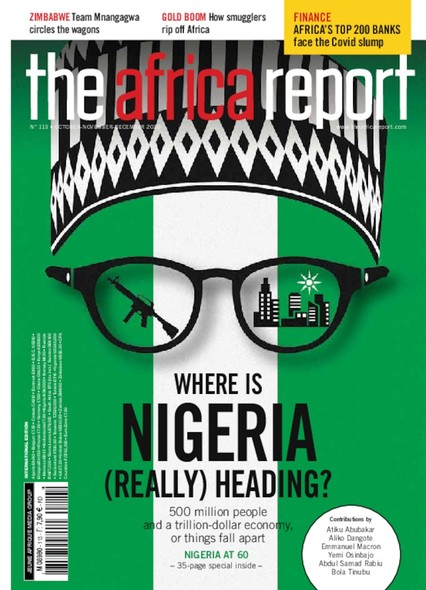 The Africa Report N°113