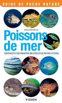 Poissons de mer : Observer et reconnaître 50 espèces de notre littoral | Vincent Rondreux