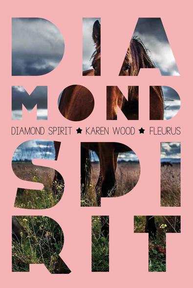 Diamond Spirit : Diamond Spirit (tome 1)