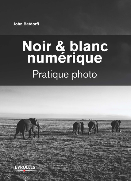 Noir et blanc numérique : Pratique photo