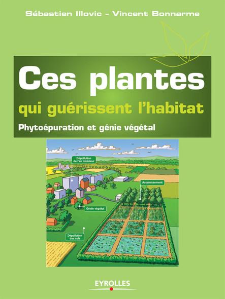 Ces plantes qui guérissent l'habitat : Phytoépuration et génie végétal
