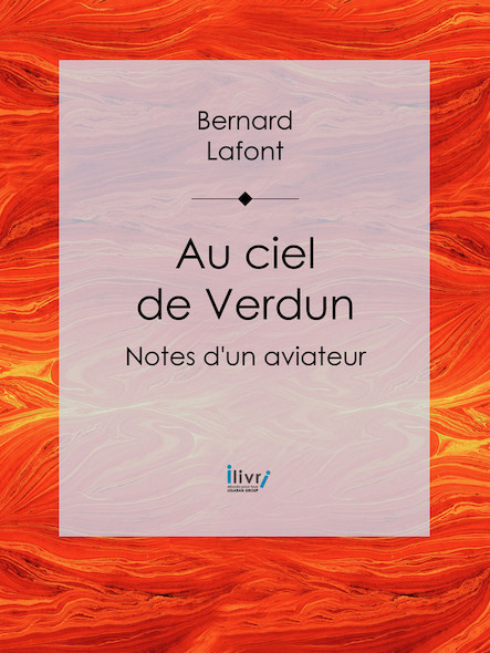 Au ciel de Verdun, Notes d'un aviateur