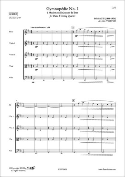 Gymnopédie No. 1 - E. SATIE - Flûte et Quatuor à Cordes